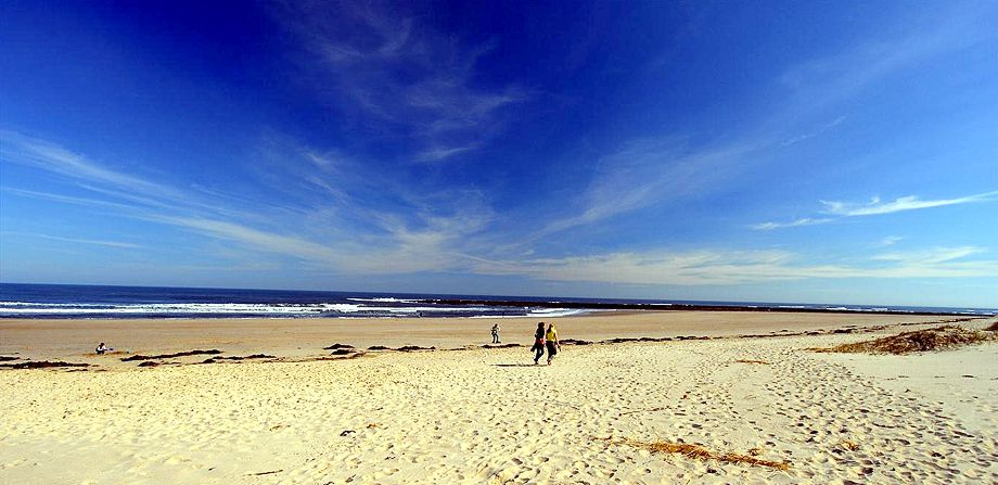 The beach at Creswell Northumberland